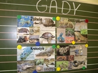 Click to view album: Gady w szkole